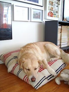 DIY Dog Bed made from inexpensive IKEA rugs!  rugged, durable, washable.