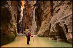 The Narrows Hike, Zion National Park