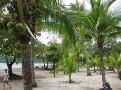 Exploring Costa Rica: Post on Mama Smiles - All Done Monkey