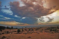 Atardecer en el  Raso del Parque Natural Urbasa Andía #ParqueNaturalUrbasa #TurismoNavarra  #TurismoRural Comarca Turistica Urbasa Estella  #NavarraNaturalmente www.casaruralnavarra-urbasaurederra.com http://nacedero-rio-urederra.blogspot.com.es http://navarraturismoynaturaleza.blogspot.com.es/ http://mundoturismorural.blogspot.com.es/