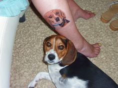 WOW!! Beagle tattoo♥  That's Great!! and so cute♫