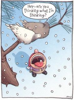 christmas cards, bird, laugh, funny pictures, funny christmas, funni, funny cartoons, joke, quot