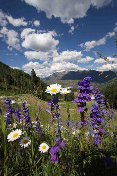Beautiful Spring Day - Durango, Colorado
