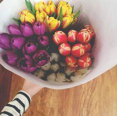 :: weekend blooms ::