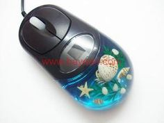 Seashell computer mouse