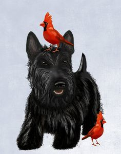 Scottie Dog Red Birds 14x11 Art Print Illustration Poster Acrylic Painting Giclee Wall Decor Wall hanging Wall Art Scottish Terrier