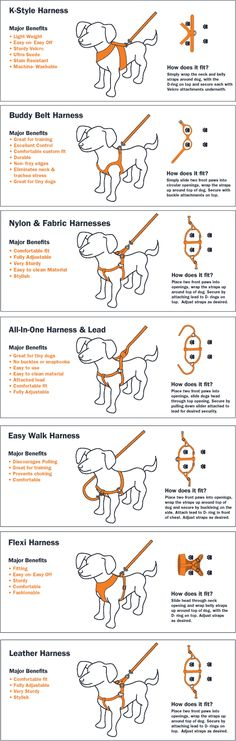 Discusses different types of dog harnesses