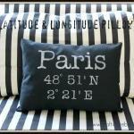 latitude and longitude pillow!
