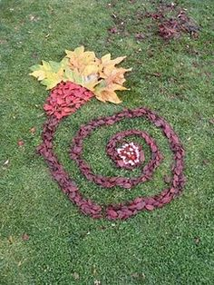 Andy Goldsworthy nature art