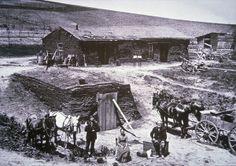 The sod homestead of the Barnes Family, Custer County, Nebraska, 1887 (b/w photo)
