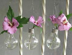 light bulb vases