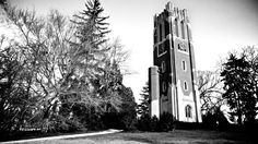 Beaumont Tower on the campus of Michigan State University.