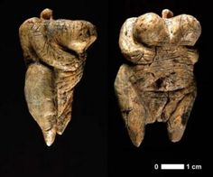 A 35,000-year-old ivory carving of a woman found in a German cave was unveiled yesterday by archeologists who believe it is the oldest known sculpture of the human form