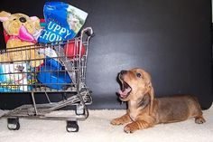 HEY theres my cart!