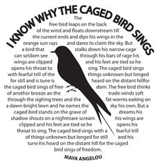 essay on caged bird by maya angelou