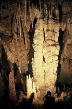 La Cueva del Guacharo ,Venezuela.