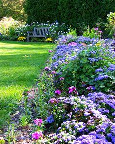 lovely border garden