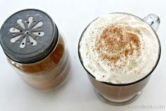 Mason Jar Cinnamon Shaker