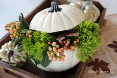 White pumpkin center