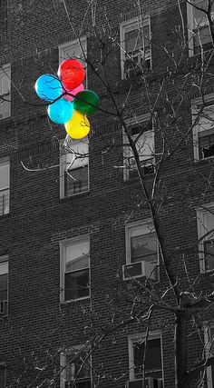 Black & white with colored balloons