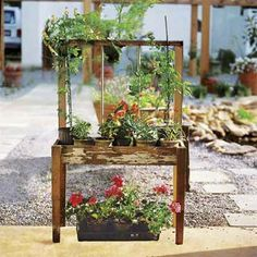 Window-Frame Trellis: Turn an old window that's missing its glass into a support for climbing vines. Here, a single sash is attached to an elevated planter made from scrap wood. As an alternative to a window, use a Windsor-style chair with vertical spindles in the backrest. Place potted plants on the seat and train tendrils around the spindles. | Photo: Courtesy of Lark Books/Sterling Publishing