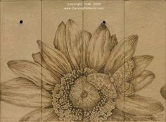 Woodburning Tutorial, Basic Tips to the Hobby, Wine Caddy Sunflower Woodburn Free Project