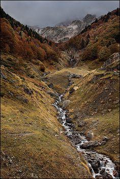 Mountain. Stream.