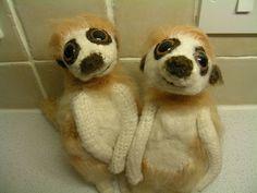 Meerkats by Brigitte Read