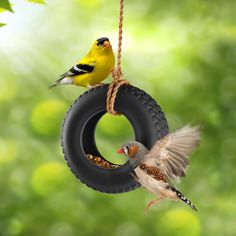 SwingTime - Ceramic Tire Swing Bird Feeder