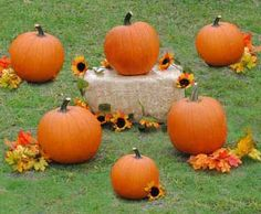 Super fun for kids and adults - this Pumpkin Ring Toss is a must at your fall carnival!