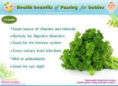 Parsley in your baby food