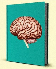 Find out how reading more can boost brain function for days!