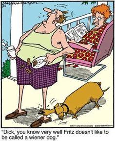 dachshund cartoons - Google Search