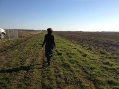 The fields in Dyess, Arkansas.