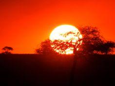 Sunset over the Serengeti, Serengeti National Park, Tanzania