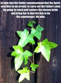 In time God the Father commissioned God the Spirit, sent Him on an errand, to carry out the Father's plan by going to reach and contact the chosen bride and bring her to God the Son to be His counterpart, His wife. More on this topic via, http://bit.ly/FatherSentSpirit