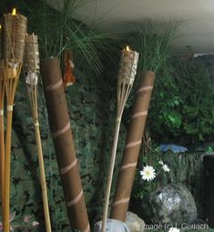 parti decor, jungl parti, jungle theme, outside decorations, kid fun, decorating ideas, jungle party, tiki torches, jungl theme