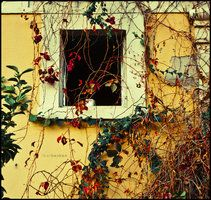 windows no:4 by ~ilkerbesken on deviantART