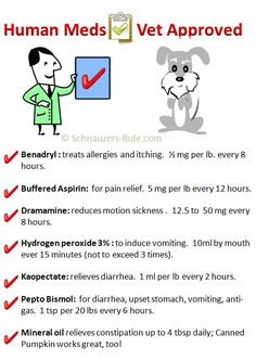 Human Medications Approved for Dogs: Benadryl, Buffered Aspirin, Dramamine, Hydrogen Peroxide 3%, Kaopectate, Pepto Bismol, Mineral Oil