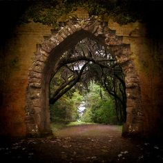 View through the archway