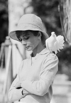 """""""The famous shot of Audrey Hepburn was just incredible. We were in a garden in the south of France and she was just a total pro – so great to work with. We were shooting and the dove just landed on her shoulder – she looked down and I got the shot and two frames later it flew away again. Incredible."""" Photo By Terry O'Neill"""