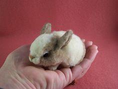 Baby Bunny Needle Felt