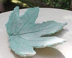 Oak Hydrangea Leaf