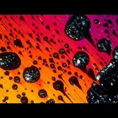 Getränke unter dem Mikroskop fotographiert