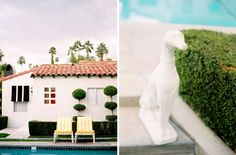 """The """"whippet"""" dog #statues at Viceroy Palm Springs accent the #hotel as the unofficial mascot."""