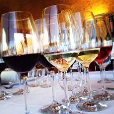 Wine Tasting @ Herdade Esporão, Portugal