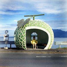 melon bus stop