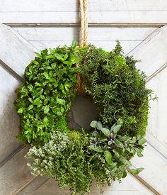 Living herb wreath
