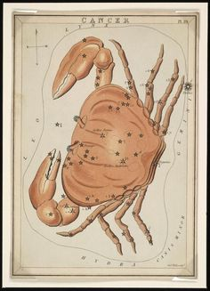 cancer  -  Astrological Sign  --  Vintage astrology Image. $5.90, via Etsy., get a free psychic reading here  http://www.astrologylove.net