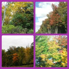 Fall Foliage in the Pocono Mountains 2012